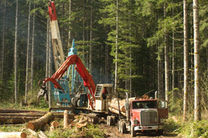 Yarder Logging Side