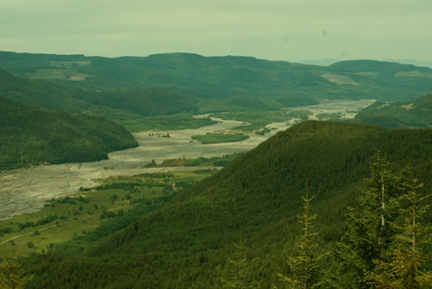 Toutle Valley, June 2011