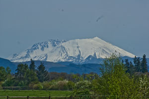 Mt. St. Helens from North of Toledo
