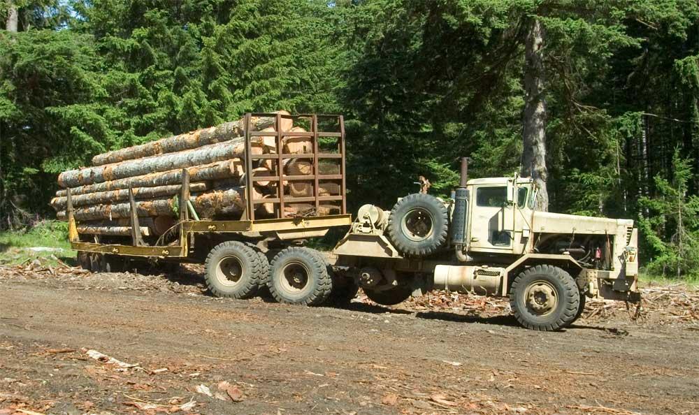 Half Ton Dodge Diesel logs2a.jpg - 13411 Bytes