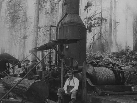 Vannatta logging forestry and timber history